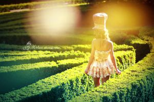 alice in wonderland IV by Noleephotography