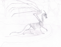 Skeleton -sketch- by FireDragon97