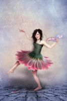 daisy dancer by JenaDellaGrottaglia