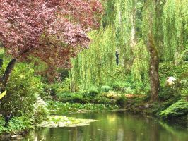 Pond 1 by Alienesse-Stock