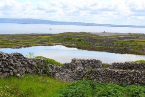 Ireland Stock 16 by sreeves2