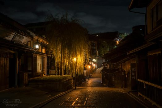 streets of Kyoto at night by LunaFeles