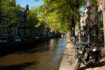 Trees, Bicycles and a Canal by koryna