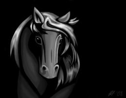 Grey Horse by Mogira