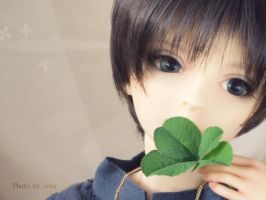 Four-leaf clover by solalis1226