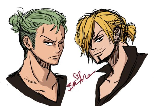 Zoro and Sanji by Malcolm6