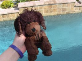 Webkinz Brown Dog Swimming by YellowLab8078