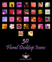 Floral Desktop Icons by anjicle