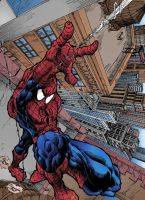 spiderman color by Fpeniche