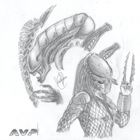 Some  AvP drafts :3 by SweetyXenomorph