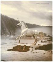 snow horse by shadowsthyme
