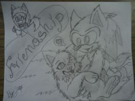 Sonic And Wolf - Friendship =3 by SonicTHW93