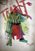 Tmnt Raphael by Coliandre