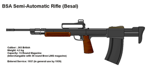 BSA Service Rifle by PaintFan08