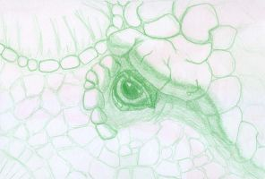 Ankylosaur sketch -3 by BAC-of-all-trades