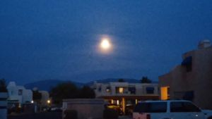 Tucson in moonlight by tigergirl6