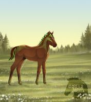 Green Lantern Foal - old ref no longer owned by SarahScala