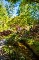 Butchart Gardens 2 by ackbad