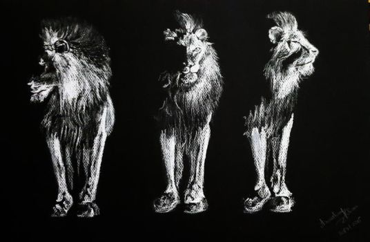 Lions by AnoushayKhan