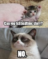 Bedtime story? by Caitybee