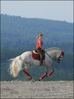 Canter by the mountains by TessPRE