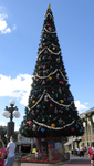Christmas Tree MK IMG 2726 by WDWParksGal-Stock