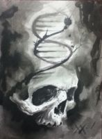 dna skull by 2eckies
