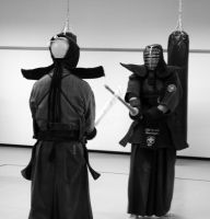 Kendo VIII by feese
