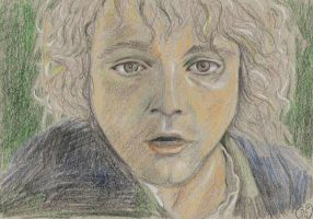 Pippin...I think by Dinahleit