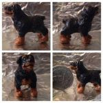 Miniature Rottweiler by sammim123
