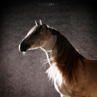 Andalusian dream by Olga5