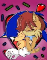 Sonic Sally kiss by Soniched