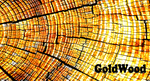 GoldWood by qupic
