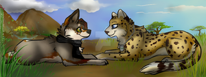 FaceBook Cover-- Desert and Savanna by Baileeluz
