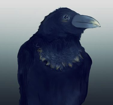 OldCrow by DancingOnAshes
