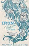 Iron and Wine poster color by jessisamess