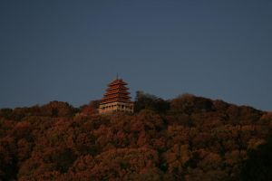 Pagoda from Neversink by raistlin306
