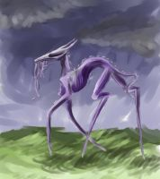 The Walker by Caium