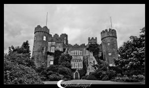 Ireland - Malahide Castle by Mondkringel