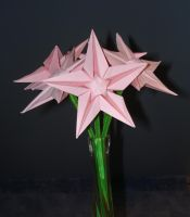 Origami Star Flowers by pandaraoke
