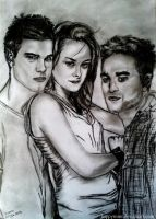 The Twilight Saga Cast by happymint