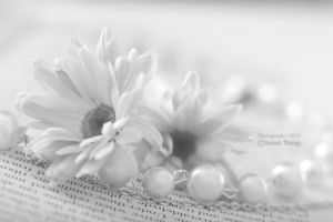 Whiteness .. by ST-ST