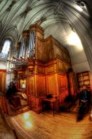 Organo HDR by langusmaiden