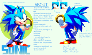 Sonic- Ref Sheet by Bubbi-Robot