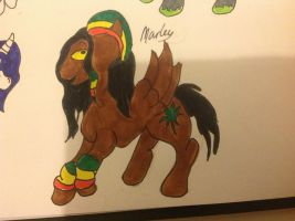 Marley by NoodleSuperPot