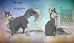 Oliver Ref Sheet- Yes, Captain! by IcePawKitteh