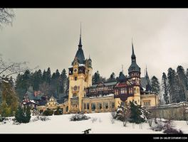 Peles Castle... by Iulian-dA-gallery