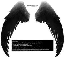 Arch Angel Wings - Silver-Black by Thy-Darkest-Hour