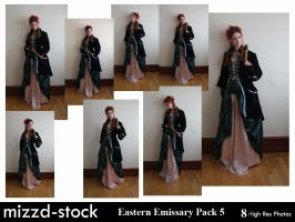 Eastern Emissary Pack 5 by mizzd-stock