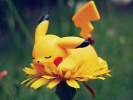 Pika Flower by AmyThunderbolt